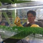 Kai Staats conducting a barley plant growth experiment at B2, 2019